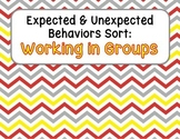 Expected & Unexpected Behavior File Folder- Working in Groups
