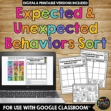 Expected and Unexpected Behaviors Sort Activity