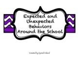 Expected and Unexpected Behaviors at School