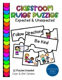 Expected and Unexpected Rules Puzzles