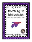 Expeditionary Learning- Becoming an Ichthyologist: The Study of Betta Fish