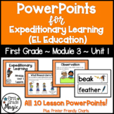 Expeditionary Learning (EL Education) 1st Grade Module 3 Unit 1 PowerPoints