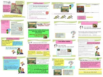 Engage NY Expeditionary Learning 3rd Grd Module 2A Unit 1 PowerPoint Lesson 1-11