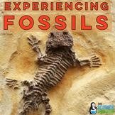 Fossils Lab