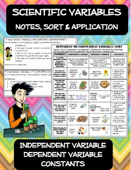 Experiment Variables Notes, Sort & Application: Independent, dependent, constant