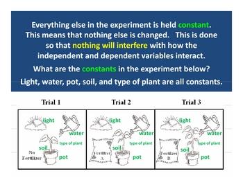 Experimental Design PowerPoint Lesson