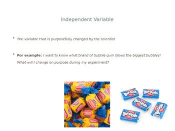 Experimental Design - Variables