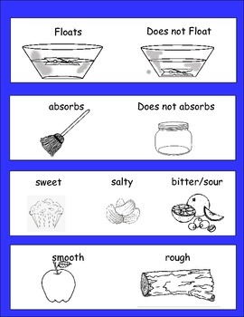 Experiments and Exploring Senses for kids