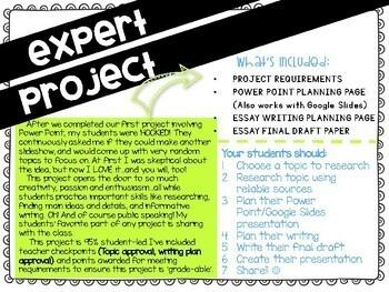 Be The Expert - Enrichment Activity