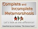 Explaining and Comparing Metamorphosis