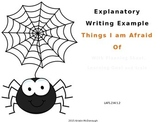 Explanatory Example Powerpoint-Things I Am Afraid Of
