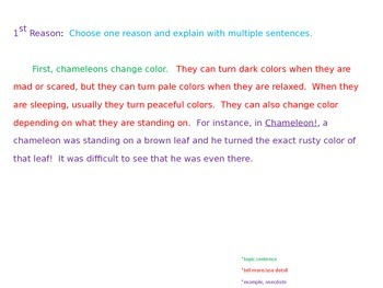 Explanatory Writing Example Powerpoint with Learning Goal and Scale-Chameleons