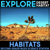 Explore Desert Habitats and Temperature - Second Grade Science Stations
