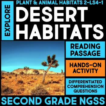 Explore Desert Habitats and Temperature - Second Grade Science Stations
