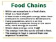 Explore Food Chains and Ecosystems
