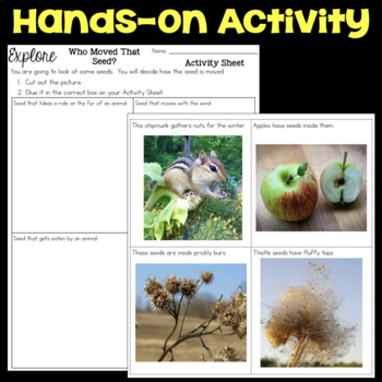 Explore How Seeds Move - Seed Dispersal - Second Grade Science Stations