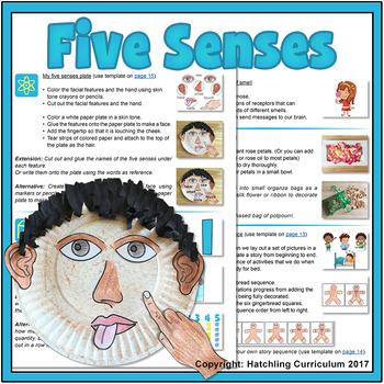 Explore our Five Senses - US Version (Letter)