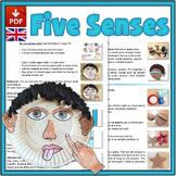Explore our Five Senses - UK Version (A4)