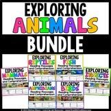 Animals Reading Passages & Comprehension Activities - BUND