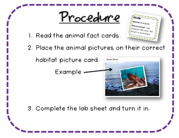 Exploring Animals Interactive Science Center {G.r.o.s.s. Science Labs}