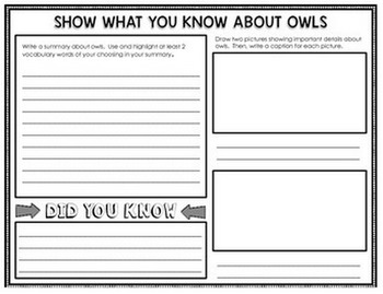 Birds - Reading Passages and Comprehension Activities