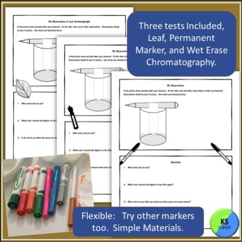 Exploring Color Chromatography:  Leaf and Marker Chromatography Experiments