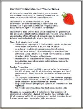 Exploring DNA:  Strawberry DNA Extraction Lab