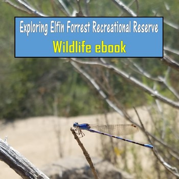 Exploring Elfin Forrest Recreational Reserve (Wildlife ebook)