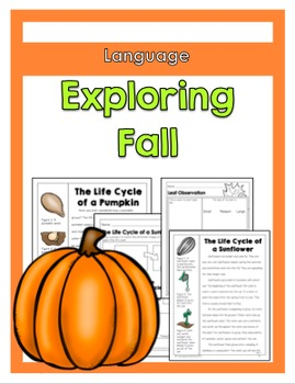 Exploring Fall Activities