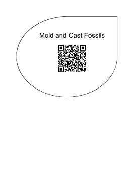 Exploring Fossils with QR Codes