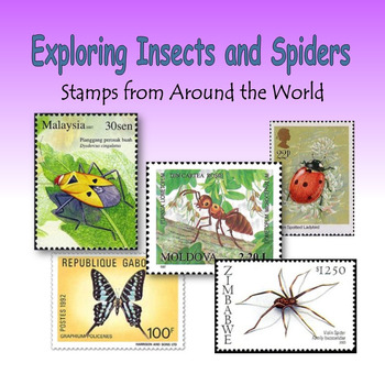 Exploring Insects and Spiders (ebook)