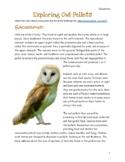 Exploring Owl Pellets Lab: An Owl Pellet Dissection