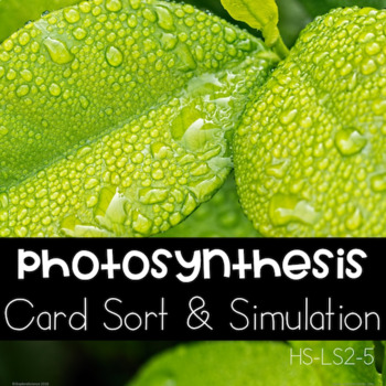 Exploring Photosynthesis (NGSS HS-LS2-5)