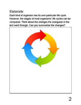 Exploring Science - Life Science (Life Cycles and Traits) - Science Notebook