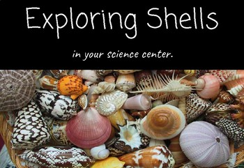 Exploring Shells in Your Science Center