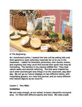 Exploring Trees Through Inquiry - A Reggio Inspired Tree Unit
