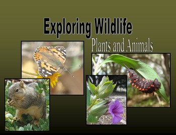 Nonfiction Book (PowerPoint):  Exploring Plants and Animals