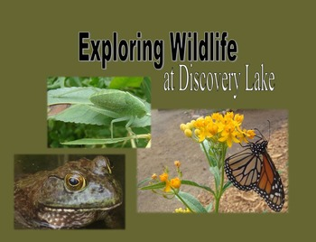 Nonfiction Book (PowerPoint):  Exploring Wildlife at Discovery Lake - California