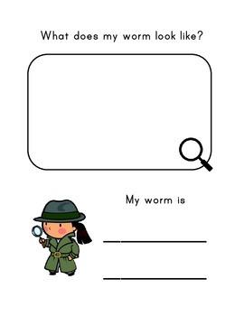 Exploring Worms Science Lab