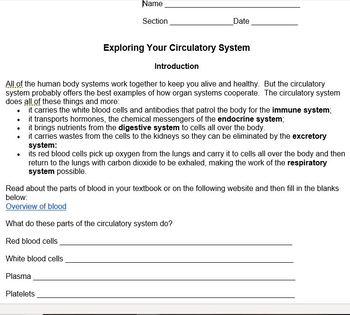 Exploring Your Circulatory System