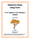 Expository Essay: Facts on the best season of the year