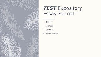 Expository Essay Format for Struggling Students