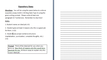 "Expository Essay, ""Ideal Job"" Assignment"