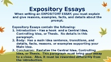 Expository Essay Lesson
