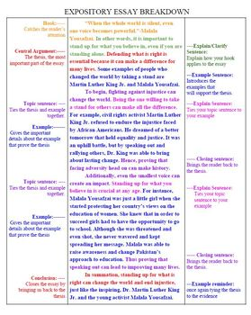 STAAR Color Coded Expository Essay Poster 7th Grade