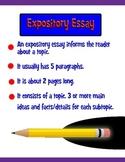 Expository Essay Writing Informational Essay Sample Organi