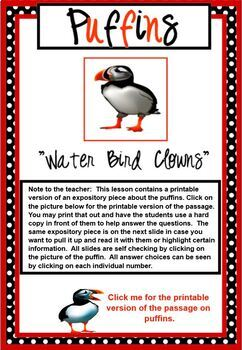 Expository Practice Passage NonFiction Text PUFFINS