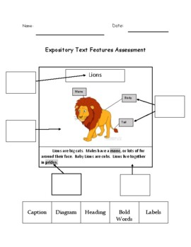 Expository Text Features Cut and Paste