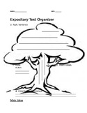 Expository Text Graphic Organizer