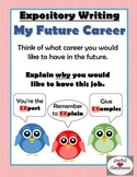 Expository Writing- My Future Career